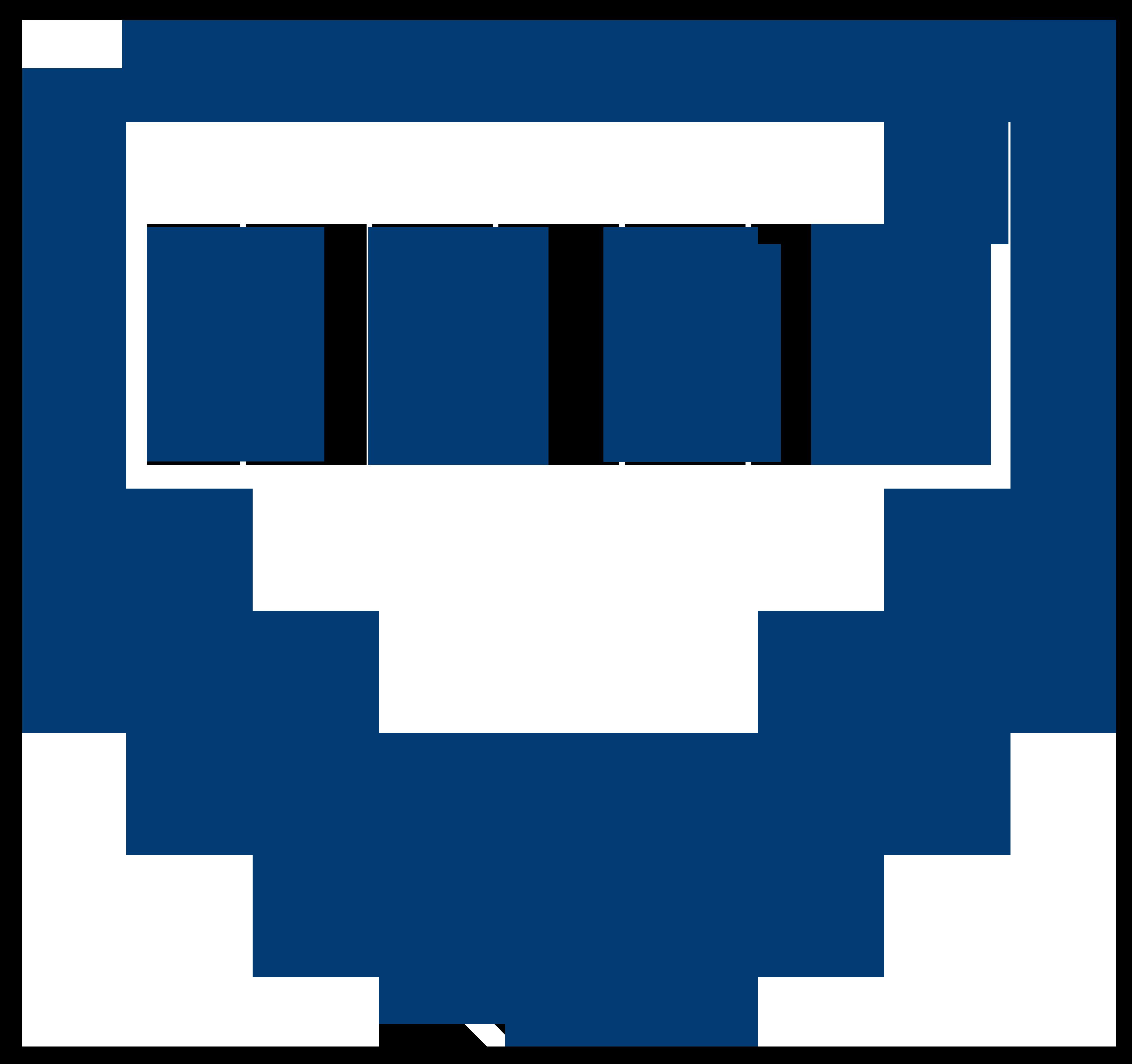 BUBS Logo
